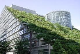 Προς δημοσίευση στο ΦΕΚ η απόφαση για κατασκευή φυτεμένων επιφανειών σε δώματα, στέγες.