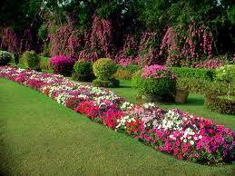 Έξυπνες συμβουλές για να οργανώσετε τον κήπο σας